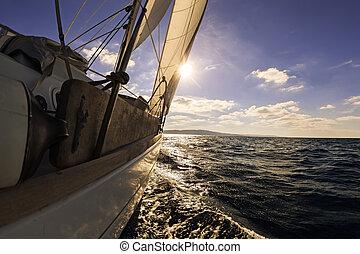 voile, angle, bateau, vue, large