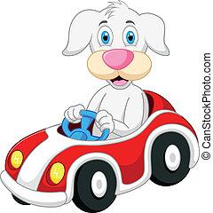 voiture, chien, conduite, dessin animé