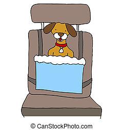 voiture, chien, siège