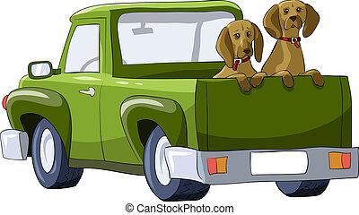 voiture, chiens