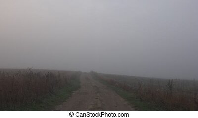 voiture, conduire, region., matin, appareil photo, 4k, intérieur., rural, brumeux