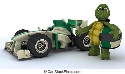voiture courir, tortue