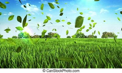 voiture, feuilles, fait, vert, field.
