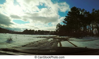 voiture, forêt, conduite, neige