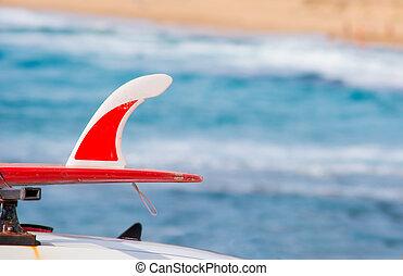 voiture, planche surf, rouges