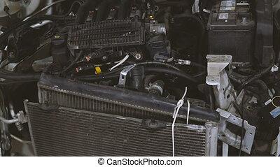 voiture, radiator., radiateur