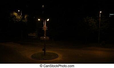 voitures, défaillance, carrefour, temps, night., mouvement