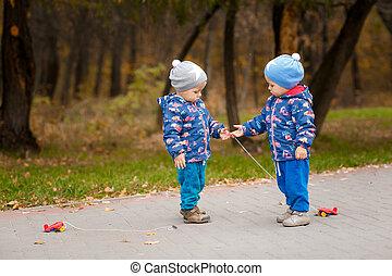voitures jouet, parc, automne, jumeaux, jouer
