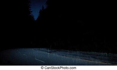 voitures, pluvieux, forêt, route, nuit