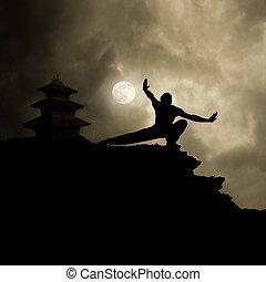 vojenský umění, kung, grafické pozadí, fu
