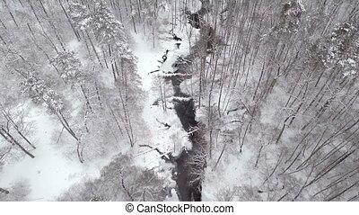 vol, hiver, nord, sommet, forêt, au-dessus, vue aérienne