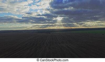 vol, sur, champ, coucher soleil, blé, aerial: