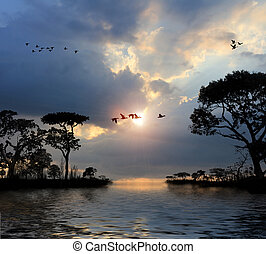 volare, uccelli, in, il, cielo, laghi, albero, tramonto