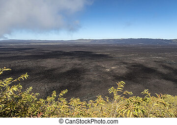 volcanic landscape at Sierra Negra at the Galapagos islands in Ecuador