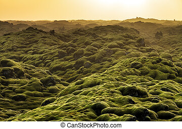 Volcanic landscape Iceland - Beautiful panorama of the...