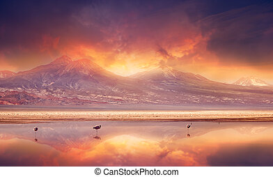 Volcanic Vibes - Vivid sunset over the Andes Mountains and...