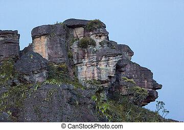 volcanique, singe, monter, roraima, forme, sommet, figure, terre