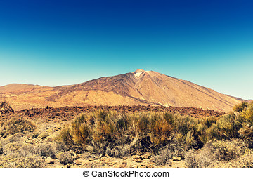volcano Teide. Tenerife Canary Islands