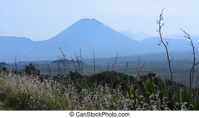 volcano - Mt. Ngauruhoe in Tongariro National Park, New...