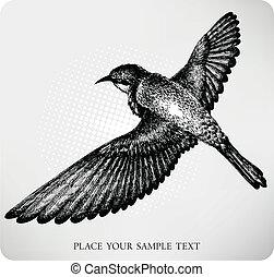 voler, drawn., oiseau, vestor, main