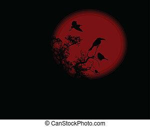 volle, boompje, maan, nacht, rood, raaf