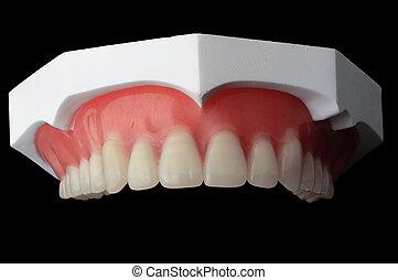 volles gebiss, dental, platte, auf, schwarzer hintergrund