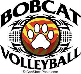 volley-ball, lynx
