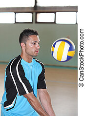 volley -ball