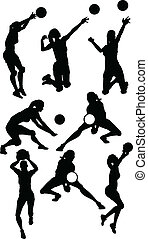 Volleyball Female Silhouettes in Athletic Poses - Vector...