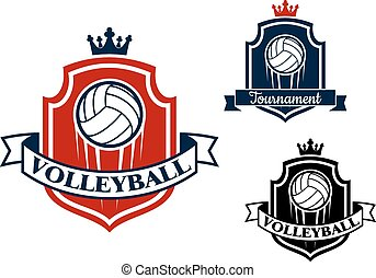 Volleyball game sports banner or emblem