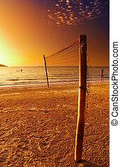 volleyball net, op, de, tropisch strand