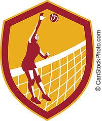 Volleyball Player Spike Ball Net Retro Shield