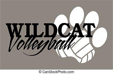 volleyball, wildcat