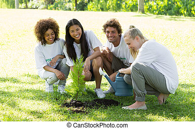 voluntários, plantar, parque, feliz