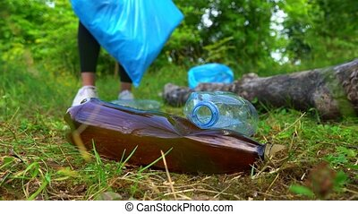 Volunteer collecting bottles in the forest. Environment ...