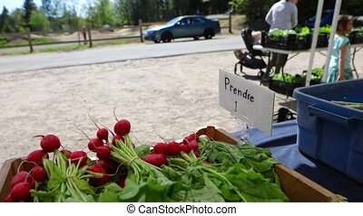 Close-up and slow-mo camera panning footage on a small French sign, saying pick one item, on a market stall at a local organic farm giving back to the locals.