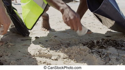 Volunteers cleaning beach on a sunny day 4k