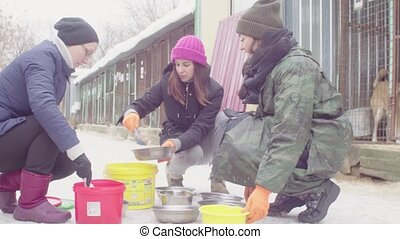 Volunteers putting food to dogs in a dog shelter - Three...