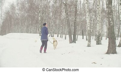 Volunteers walking with stray dogs from dogs shelter - Two...