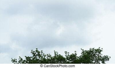 von, tag nacht, schöne , hd, zeit- versehen, lagergesamtlänge, von, wolkenhimmel, verabschiedung, aus, blaues, sky.