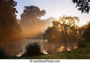 vondelpark, zonopkomst