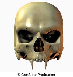 voorkant, vampier, schedel, aanzicht