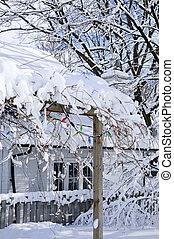 voorste yard, van, een, woning, in, winter