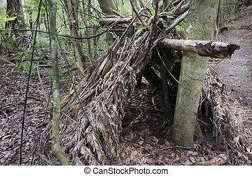 voortbestaan, puin, -, wildernis, hutten