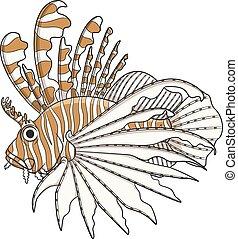 voorwerpen, kleur, illustratie, vector, witte , lionfish.