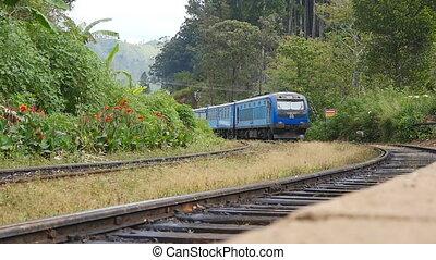 voyage, transport, vieux, mouvements, station, campagne, arrive, passager, ferroviaire, transport, tourism., ou, concept, beau, pendant, été, bleu, lent, day., train, gens., mouvement