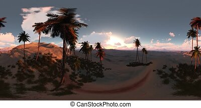 vr 360 panorama of palms in desert at sunset. made with the...