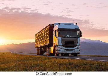 vrachtwagenchauffeur, straat
