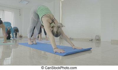 vrai, debout, pilates, groupe, natte, milieu, studio, fitness, exercices, yoga, vieilli, corps, femmes