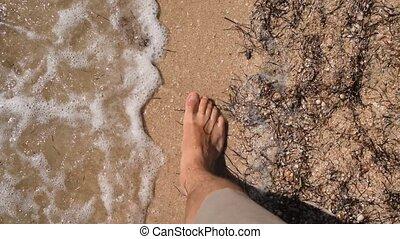vrai, marche, pieds nue, pieds, temps, plage, sablonneux